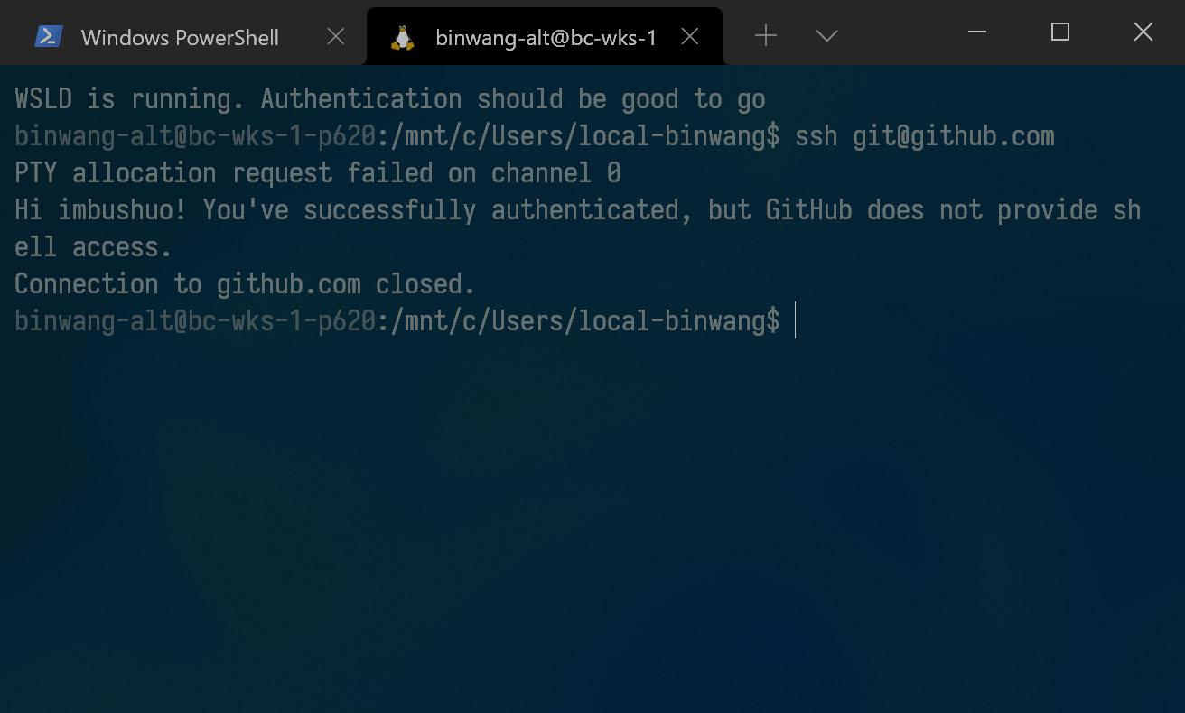 WindowsTerminal_IV2oxkln6i.jpg